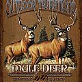 Outdoor Traditions Mule Deer by JQ Licensing