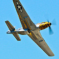 P-51 Mustang Wing Over by Puget  Exposure