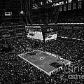Pacers Indiana by David Haskett