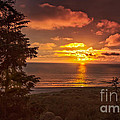 Pacific Sunset by Robert Bales