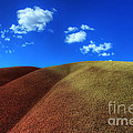 Painted Hills Blue Sky 1 by Bob Christopher