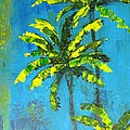 Palm Trees by Patricia Awapara