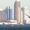 Panoramic Image Of San Diego From The Harbor by Artist and Photographer Laura Wrede
