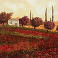 Papaveri In Toscana by Guido Borelli