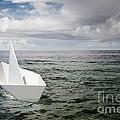 Paper Boat by Carlos Caetano