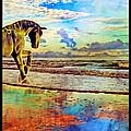 Paradise Sunset by Betsy C Knapp