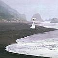 PARASOL BEACH Print by Robert Foster