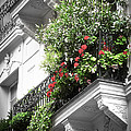 Paris balcony Print by Elena Elisseeva