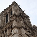 Paris France - Notre Dame De Paris - 01139 by DC Photographer