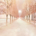 Paris Tuileries Row Of Trees - Paris Jardin Des Tuileries Dreamy Park Landscape  by Kathy Fornal