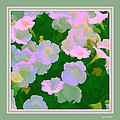Pastel Flowers II by Tom Prendergast