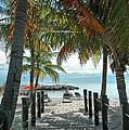Path To Smathers Beach - Key West by Frank Mari