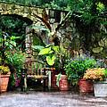 Patio Garden in the Rain Print by Susan Savad