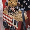 Patriot Bear by Sharon Elliott