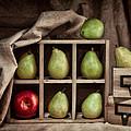 Pears On Display Still Life by Tom Mc Nemar