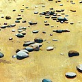 Pebbles On The Beach - Oil by Michelle Calkins