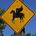 Pegasus Road Sign by Garry Gay
