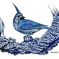 Pen And Ink Drawing Of Small Blue Bird  by Mario Perez
