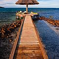 Perfect Vacation by Adam Romanowicz