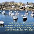 Perkins Cove Serenity by Patricia Urato