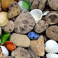 Petoskey Stones Lll by Michelle Calkins
