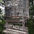 Petticoat Junction by Kristin Elmquist