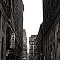 Philly Street by Olivier Le Queinec
