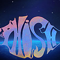 Phish by Bill Cannon