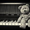 Piano Bear Print by Tim Gainey