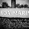 Pictue of Balboa Marina Sign in Newport Beach Print by Paul Velgos