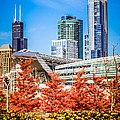 Picture Of Chicago In Autumn by Paul Velgos
