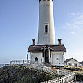 Pigeon Point Lighthouse by Amy Fearn