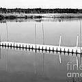 Pine Barrens Dock by John Rizzuto