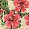 Pink Hibiscus by Debbie DeWitt