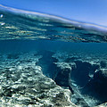 Pipe Reef. by Sean Davey