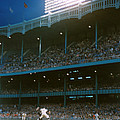 Old Yankee Stadium  by Retro Images Archive