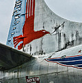 Plane Tail Wing Eastern Air Lines by Paul Ward