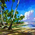 Playa Bonita by Douglas Simonson