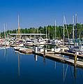 Pleasant Harbor by Mark Bowmer