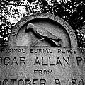 Poe's Original Burial Place Print by Jennifer Lyon