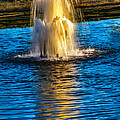 Pond Fountain by Robert Bales