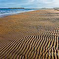 Popham Beach by Susan Cole Kelly