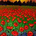 Poppy Carpet  by John  Nolan