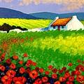Poppy Field - Ireland by John  Nolan