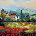 Poppy fields of Italy Print by Gina Femrite