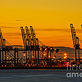 Port Of Felixstowe by Svetlana Sewell