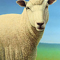 Portrait Of A Sheep by James W Johnson