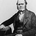 Portrait Of Charles Darwin by English Photographer