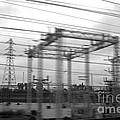 Power lines Print by Tony Cordoza