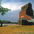 Prairie Sentinel by Terry Reynoldson